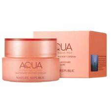 Nature Republic Super Aqua Moisture Watery Cream (dry skin)